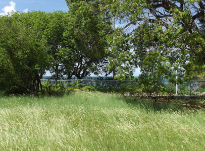 Hodges Bay Land | ABSOLUTE PROPERTIES ANTIGUA